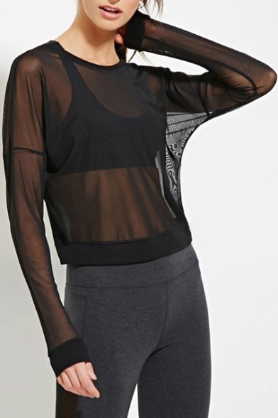 Round Neck Batwing Long Sleeve Cropped Plain Sheer Tee