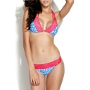 Swallow Print Contrast Lace Trim Strappy Bikini Set