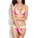Dotted Lace Trim Braided Strap Triangle Bikini Set