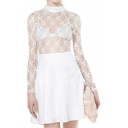 Semi Sheer Lace Insert Mini Dress with Long Sleeve