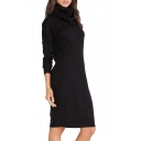 Plain High Neck Long Sleeve Knitted Dress with Open Back