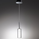 Single Light Glass Shaded Suspensions Designer Pendant Light