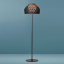 Arcylic Umbrella Shaped Dark Color Designer Floor Lamp