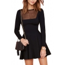 Fashionable Dot Pattern Mesh Panel Long Sleeve Black A-line Dress