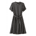 Polka Dot Stand Up Collar Short Sleeve Belted Dress