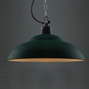 Dark/Light Green 1 Light Single Light Down Lighting Indoor Pendant