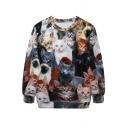 3D All Kinds Of Cats Print Sweatshirt