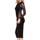 Sexy Round Neck Long Sleeve Mesh Inserted Sheer Midi Dress