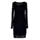 Black Long Sleeve Lace Crochet Round Neck Dress