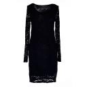 Black Long Sleeve Lace Crochet Round Neck Dress