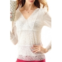 White V-Neck Lace Crochet Mesh Inserted Long Sleeve Top