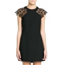 Black Lace Inserted Short Sleeve Mini Dress