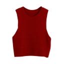 Crop Plain Round Neck Vest Style Sweater