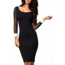 Color Block Sheer Net Insert 3/4 Sleeve Bodycon Dress