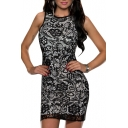 Mesh Inserted Lace Round Neck Sleeveless Fitted Mini Dress