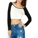 Scoop Neck Mono Block Crop T-Shirt