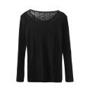 Lace Insert Round Neck Plain Knit Fitted Sweatshirt