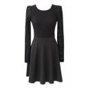 Lace Top A-line Long Sleeve Dress