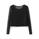 Black Long Sleeve Lace Cutwork Ruffle Hem Top
