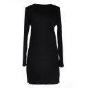 Black Long Sleeve Plain Bodycon Dress