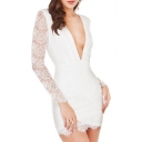 Plunge Neck Eyelash Lace Sheer Sleeve Backless Bodycon Dress