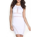White Mesh Inserted Round Neck Sleeveless Mini Dress