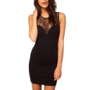Black Lace Insert Sheer Sleeveless Dress
