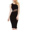 Sexy Sheer Mesh Panel Slim Knee Length Bodycon Black Dress