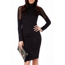 Plain High Neck Sheer Net Insert Long Sleeve Dress