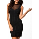 Black Mesh Inserted Sleeveless Round Neck Bodycon Dress