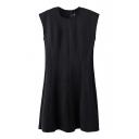 Black Sleeveless Seam Detail Concise Dress