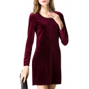 Plain  Long Sleeve Pleuche Slim Dress