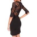 Delicate Eyelash Lace Panel Back Zip 3/4 Sleeve Dress