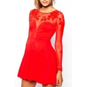 Red Mesh Sheer Long Sleeve Round Neck Dress with Keyhole Back
