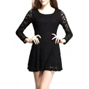 Lace Long Sleeve Ladylike Dress