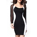 Mesh Inserted Long Sleeve Scoop Mini Dress