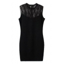 Plain Lace Panel Stand Collar Sleeveless Fitted Skinny Dress
