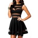 Sheer Round Neck Sleeveless Mini Pleated Dress