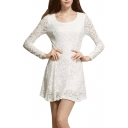 White Lace Long Sleeve Ladylike Dress