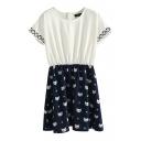 Color Block Round Neck Short Sleeve Kitten Print A-line Dress