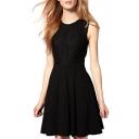 Black Lace Insert Sleeveless Pleated Dress