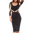 Color Block 3/4 Sleeve Sheer Dress with Scoop Neck