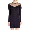 Sheer Shoulder Long Sleeve Fitted Dress