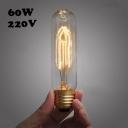 60W 220V E27  T10 Edison Bulb