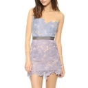 Sexy Lithe Tulle&Lace Panel Embroidered Slim Mini Dress