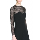 Lace Insert Round Neck Long Sleeve Dress