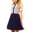 Lace Chiffon Insert Short Sleeve Dress
