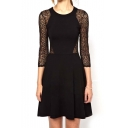 Black Lace Insert Sheer Cutout Back Dress