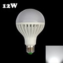 Plastic 220V E27 12W Cool White Light LED Globe Bulb