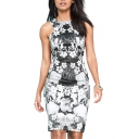 Floral Print Round Neck Sleeveless Fitted Dress with Zip Back
